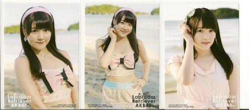 AKB48 公式生写真 ラブラドール・レトリバー 封入生写真 3種 コンプ 【木本花音】 SKE48