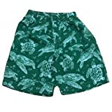 Emerald Green Sea Turtles Toddler Swim Trunks-3T