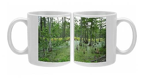 Photo Mug Of Atchofalaya Swamp In The Heart Of Cajun Country, Near Gibson, Louisiana From Robert Harding