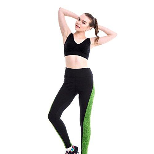 Camicia Piccolo Cane, Dog Shirt, Ouneed® Pantaloni sportivi Athletic Gym Fitness ghette pantaloni di yoga (Verde, S)