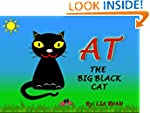 AT THE BIG BLACK CAT