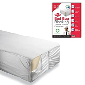 Orkin Bed Bug Blocking Mattress Encasement Twin Amazon
