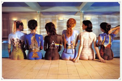 Pink Floyd Maxi Poster Back Catalogue, multicolore