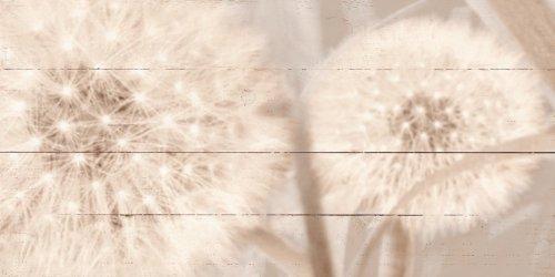 wohnaccessoires artland bedruckte holzbretter pusteblume in sepia wanddeko wandbild. Black Bedroom Furniture Sets. Home Design Ideas