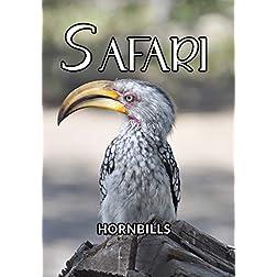 Safari Hornbills