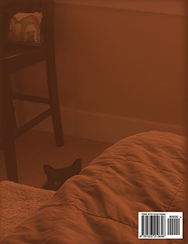 Find the Cat and More! Volume 2: Prepositions