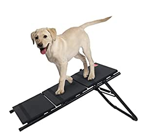 Amazon Coleman Convertible Pet Stairs and Ramp Pet