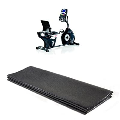Schwinn 270 Recumbent Bike and Stamina Equipment Mat Bundle