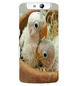 ColourCraft Cute Birds Design Back Case Cover for OPPO N1