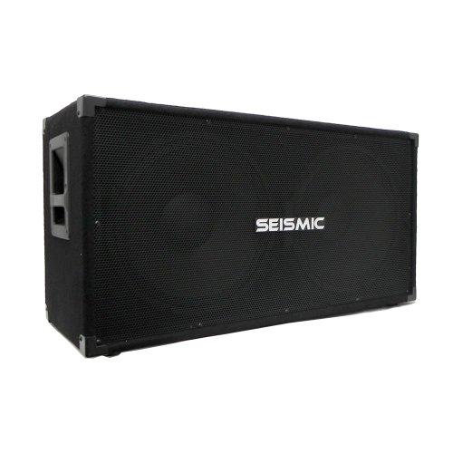 Seismic Audio - 215 Bass Guitar Speaker Cabinet 2X15 Pa Dj 600 Watts Dual