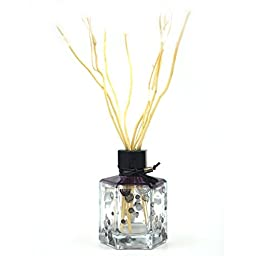 Eyun E16 Essential Oil Reed Diffuser Gift Set - Glass Bottle, Reed Sticks andNatural Scented Fragrance Oil for Aromatherapy and Air Fresheners.100ML,Lavender Scent