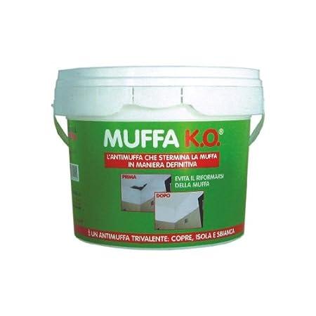 Casa immobiliare accessori muffa da risalita - Muffa e umidita in casa ...