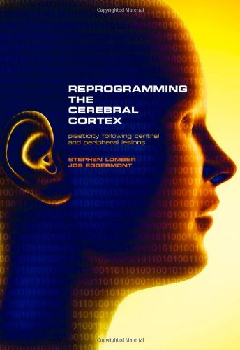 Reprogramming The Cerebral Cortex: Plasticity Following Central And Peripheral Lesions