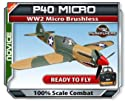 Parkflyers P40 RTF WW2 Micro Brushless Electric RC Airplane EPO!