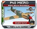 Parkflyers P40 RTF WW2 Micro Brushless Electric RC Airplane EPO!
