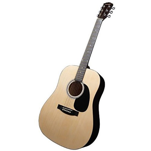 fender full size dreadnought acoustic guitar with free carrying bag and accessories guitar case. Black Bedroom Furniture Sets. Home Design Ideas