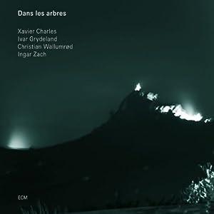 Christian Wallumrod - Dans Les Arbres  cover