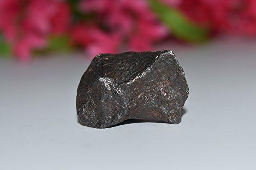Canyon Diablo Meteorite 41.6g- 3rd Eye, Crown Activation, Ascension, Spiritual Awakening, High Vibration, Crystal Healing, Wicca, Pagan (High Vibration Crystals compare prices)