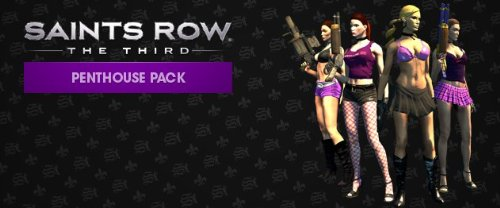 Saints Row: The Third Penthouse Pack DLC [Online Game Code]