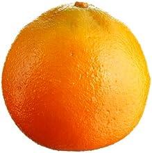 Orange Fruit Pack of 24