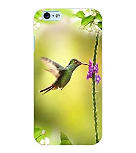 ColourCraft Beautiful Bird Design Back Case Cover for APPLE IPHONE 6S