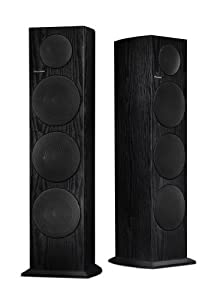 Pioneer SP-FS51-LR Floorstanding Loudspeakers (Black, Pair) (Discontinued by Manufacturer)