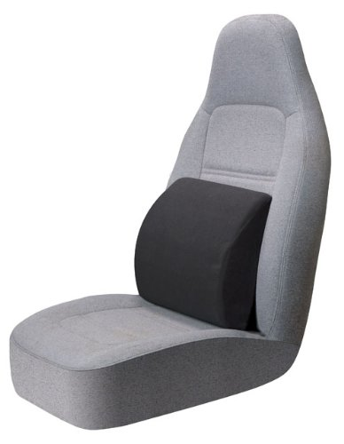 Auto Expressions Portable Lumbar Seat Cushion - Black at Sears.com
