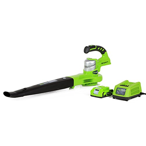 Greenworks 24352 G-24 Li-Ion Cordless Sweeper With 2.0Ah Battery And Charger