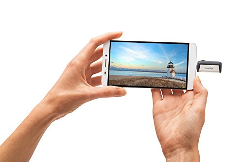 SanDisk-Ultra-32-GB-Type-C-Dual-USB-31-Flash-Drive