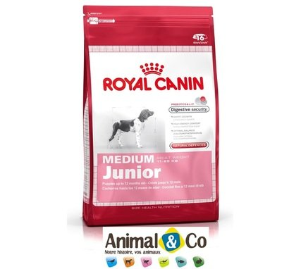 royal canin medium junior pas cher. Black Bedroom Furniture Sets. Home Design Ideas
