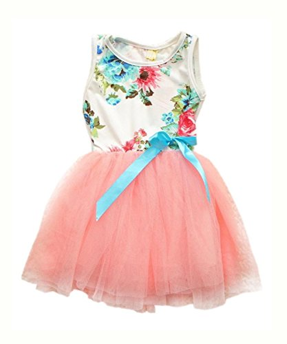 MAXGIRL Girls Baby Toddler Sleeveless Flowers Floral Top Bowknot Tutu Dress 1-4Y