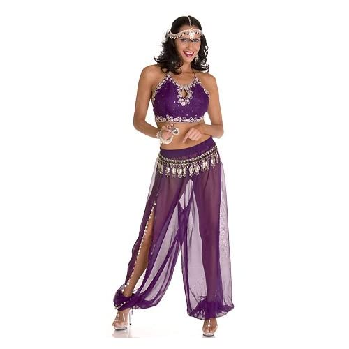 Sexy Girls in Purple Harem - Womens Sexy Belly Dance Costume