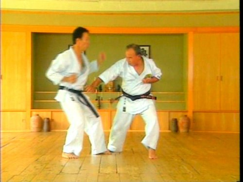 the way of sanchin kata the application of power pdf