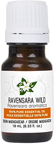 Ravensara Wild Essential Oil 10 ml