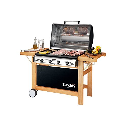 Barbeque Profy Gas Grill 2010 Inox