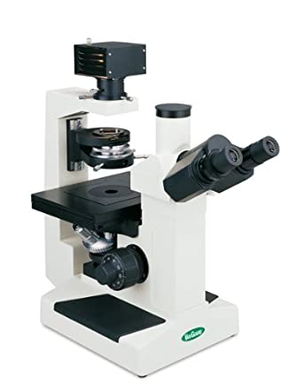 VanGuard Brightfield Inverted Microscope with Trinocular Head, Halogen Illumination, 10X, 25X, 40X Magnification