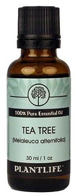 Tea Tree 100% Pure Essential Oil - 30ml