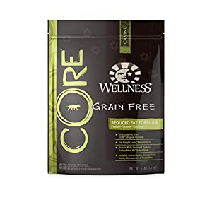 Wellness CORE Natural Grain Free Dry Dog Food, Reduced Fat Weight Management Turkey & Chicken Recipe, 4-Pound Bag