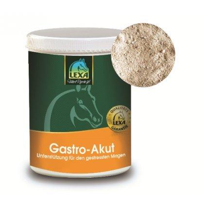 Lexa Gastro-Akut 1 kg