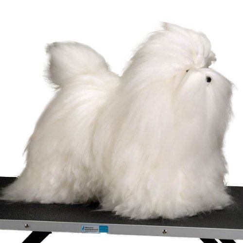 Top Rated Dog Grooming Schools