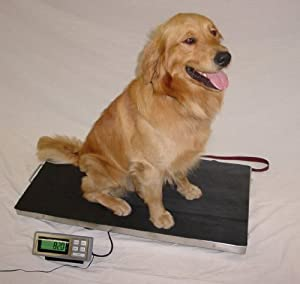 700 LB x 0.2 LB 44 x 22 Inch Extra Large Platform Vet Veterinary Animal Livestock Dog Goat Calf Pig Sheep 4H Digital Scale