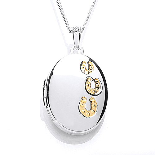 the-blue-cross-animal-charity-silver-oval-locket-with-gold-plated-and-cubic-zirconia-hoof-prints-dis