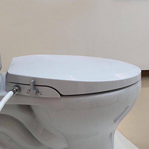Toddler Toilet Seat Elongated