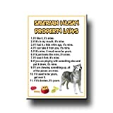 Siberian Husky Property Laws Fridge Magnet No 1