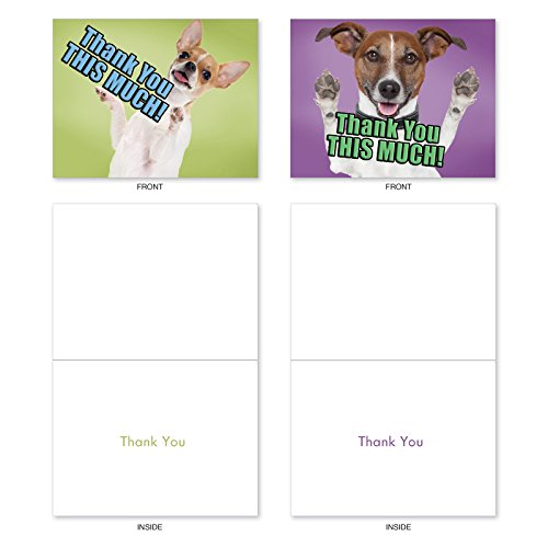M2369TYG Dog Big Thanks: 10 Assorted Thank You Note Cards