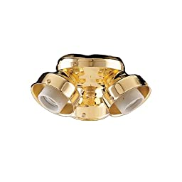 Turtle Three Light Fitter Ceiling Fan Light Kit Finish: Polished Brass