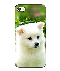 3D instyler DIGITAL PRINTED BACK COVER FOR APPLE IPHONE 5S
