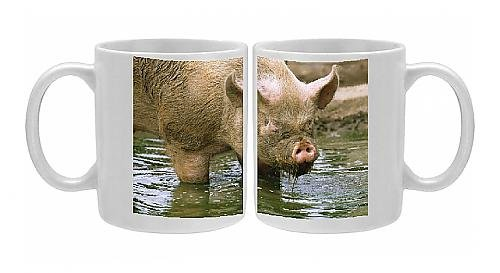 Photo Mug Of Pig - Middle White Pig Standing In Water front-581549