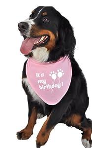Ruff Ruff and Meow Doggie Bandana, Its My Birthday, Pink, Small