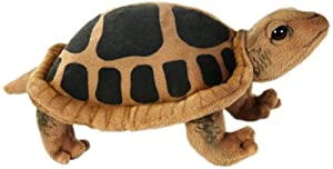 Turtle No.3816 (japan import)